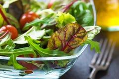 Fresh spring salad Stock Images