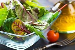 Fresh spring salad Royalty Free Stock Image