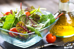 Fresh spring salad Royalty Free Stock Images