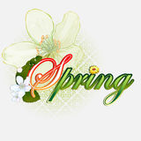 Fresh spring  scene background with Spring text garnished by beautiful white flowers Royalty Free Stock Photos