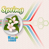 Fresh spring  scene background with Spring text in seasonable colors Stock Image