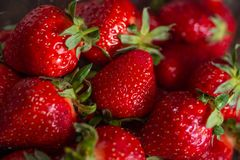 Fresh spring strawberry, organic berries from farm. Fresh spring strawberry, organic berries close-up stock photo