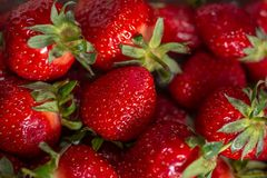 Fresh spring strawberry, organic berries from farm. Fresh spring strawberry, organic berries close-up royalty free stock images