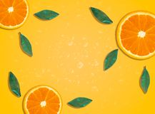 Fresh spring summer background wallpaper with orange slices royalty free stock images