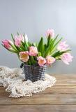 Fresh spring tulips in bucket Stock Photo