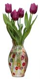 Fresh spring  tulips in vase. isolated white background. Stock Photos