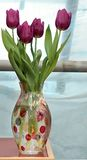 Fresh spring  tulips in vase. Naturmort with flowers Royalty Free Stock Photos