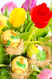 Fresh spring tulips wuth easter eggs Stock Photos