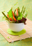 Fresh spring vegetables Royalty Free Stock Image