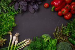 Fresh spring vegetables on black chalkboard. Background layout with free text space Stock Images