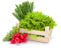 Fresh spring vegetables in crate Royalty Free Stock Images
