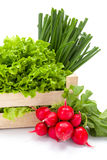 Fresh spring vegetables in crate Stock Photo