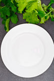 Fresh Spring Vegetables, Greens and Empty White Plate with Place Stock Image