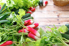 Fresh spring vegetables and herbs. Food closeup Stock Photo