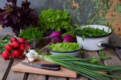 Fresh spring vegetables: radish, green and purple lettuce, onions, arugula on a wooden background. Preparation of food, salad. Hea. Lthy food Stock Photo