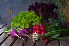 Fresh spring vegetables: radish, green and purple lettuce, onions, arugula on a wooden background. Preparation of food, salad. Hea. Lthy food Stock Photos