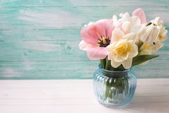 Fresh  spring white and pink  tulips and narcissus in  blue vase Stock Photo