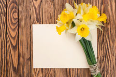 Fresh  spring yellow  daffodils  flowers and empty tag on brown painted wooden planks. Selective focus. Place for text. Fresh  spring yellow  daffodils  flowers Stock Photo