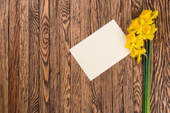 Fresh  spring yellow  daffodils  flowers and empty tag on brown painted wooden planks. Selective focus. Place for text. Fresh  spring yellow  daffodils  flowers Stock Photos