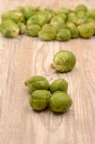 Fresh sprouts Stock Photos