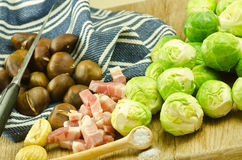 Fresh sprouts and chestnuts Stock Photos