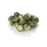 Fresh sprouts on white Stock Images