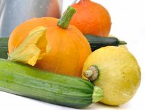 Fresh squash and zucchini Royalty Free Stock Images