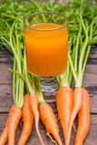 Fresh-squeezed carrot juice Stock Images