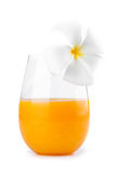 Fresh squeezed orange juice with white flower on top on white ba Stock Image