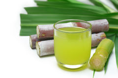 Fresh squeezed sugar cane juice. Royalty Free Stock Photography