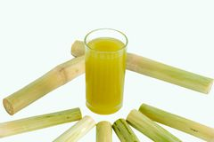 Fresh squeezed sugar cane juice in pitcher with cut pieces cane royalty free stock image