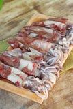 Fresh squid Royalty Free Stock Image