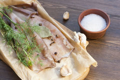 Fresh squid carcass with spices. On paper royalty free stock photography
