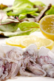 Fresh squid and lemon Royalty Free Stock Images
