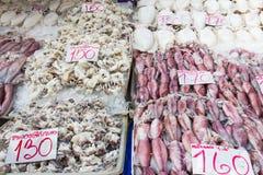 Fresh squid Stock Image