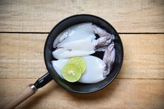 Fresh squid on pan pot top view / Raw squid and lemon lime on wooden background royalty free stock images