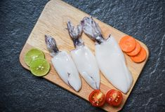 Fresh squid on wooden cutting board top view royalty free stock image