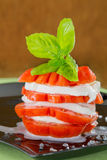 Fresh stack of caprese salad Stock Images