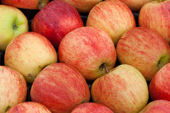 Fresh stacked apples Royalty Free Stock Photos
