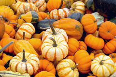 FRESH, STACKED PUMPKINS ON A WOODEN WAGON Stock Images