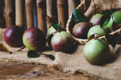 Fresh Starapples Stock Photography