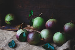 Fresh Starapples Royalty Free Stock Photos