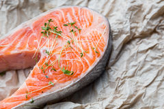 Fresh steak of salmon on crushed brown paper Royalty Free Stock Photos
