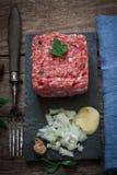 Fresh steak tartar Royalty Free Stock Image