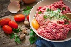 Fresh steak tartar Stock Images