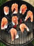 Fresh steaks salmon fish grilled for dinner. View royalty free stock photos