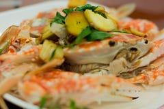 Fresh steam crab Stock Photos