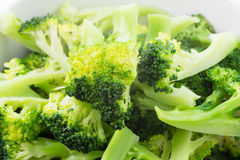 Fresh steamed broccoli in bowl Royalty Free Stock Image