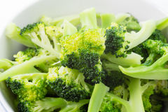 Fresh steamed broccoli in bowl Stock Photography