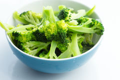 Fresh steamed broccoli in bowl Royalty Free Stock Images